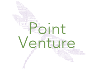 Point-Venture-Homes-for-Sale
